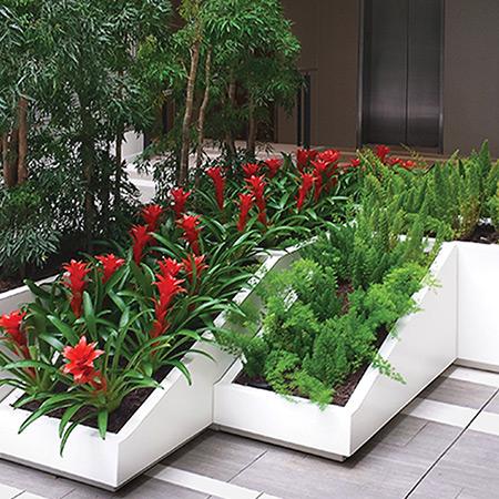 FRP Fiberglass Special Design Potted Plant 8